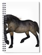 Zephyr Spiral Notebook
