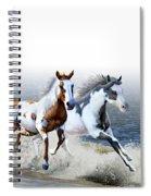 Ziggy's And Annie's Beach Run Spiral Notebook