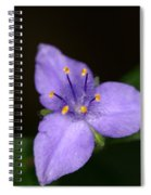 Zigzag Spiderwort Spiral Notebook