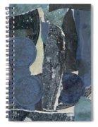 Zinc Fireworks Spiral Notebook