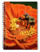 Zinnea With Honeybee Spiral Notebook
