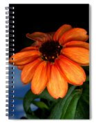 Zinnia Grown On Iss Veggie Facility Spiral Notebook