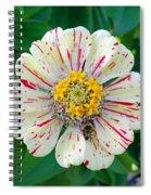 Zinnia Guest Spiral Notebook