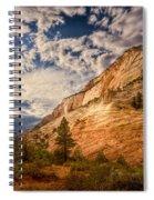 Zion Afternoon Spiral Notebook