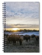 Zion Mountain Ranch Buffalo Herd Spiral Notebook