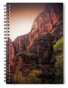 Zion National Park Usa  Spiral Notebook