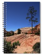 Zion Park Colors And Texture Spiral Notebook