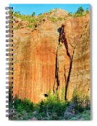 Zion Rock Wall Spiral Notebook