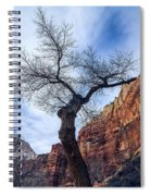 Zion Tree Woman Spiral Notebook