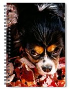 Zoeh - Look Into My Eyes Spiral Notebook