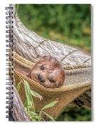 Zoo1 Spiral Notebook