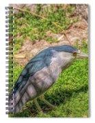 Zoo4 Spiral Notebook