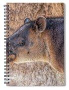 Zoo7 Spiral Notebook