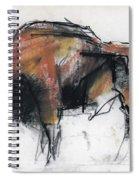 Zubre  Bialowieza Spiral Notebook