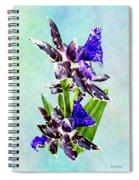 Zygo Advance Australia Hof Spiral Notebook