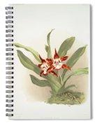 Zygopetalum Burtii Spiral Notebook
