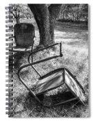 044 - Old Friends Spiral Notebook