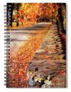 Autumn Avenue Spiral Notebook
