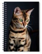 Bengal Cat Portrait Spiral Notebook