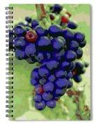 Blue Grape Bunches 6 Spiral Notebook