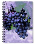 Blue Grape Bunches 7 Spiral Notebook