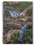 Blue Jay Stand Off Spiral Notebook