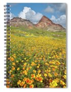 Boundary Cone Butte Spiral Notebook