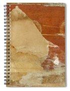 Burnt Orange Collage Spiral Notebook