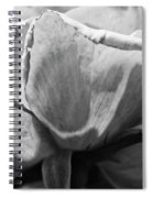 Close-up Of A Rose, Los Angeles County Spiral Notebook