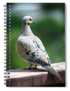 Dove On The Deck Spiral Notebook