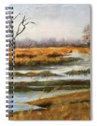 Early Spring On The Marsh Spiral Notebook