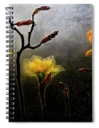 Earth To Heaven Spiral Notebook