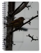 Feathered Friend Spiral Notebook