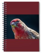 Finch Spiral Notebook