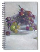 Greek Grapes Spiral Notebook