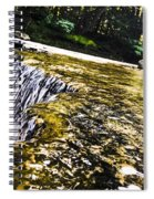 Hogback Ridge Park Spiral Notebook