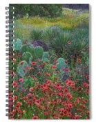 Indian Blanket Flowers And Opuntia Spiral Notebook