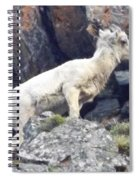 Litttle Big Horn Spiral Notebook