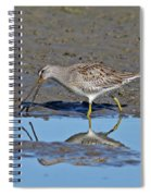 Long-billed Dowitcher Spiral Notebook