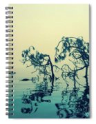 Paddle Board Adventure Spiral Notebook