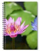 Pink Lotus Water Flower Spiral Notebook