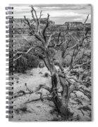 Pinyon Pine Spiral Notebook