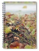 Queen Of The Mound Spiral Notebook