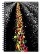 Rows Of Tulips Spiral Notebook