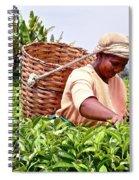 Tea Picker In Kenya Spiral Notebook
