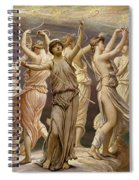 The Pleiades  Spiral Notebook