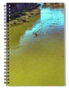 Up Stream Spiral Notebook