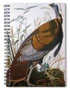 Wild Turkey  Male  Spiral Notebook
