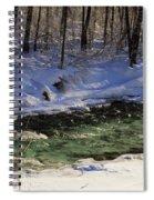Winter Stream Near Hope On The Kenai Peninsula Alaska Spiral Notebook