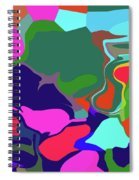 10-19-2008abc Spiral Notebook